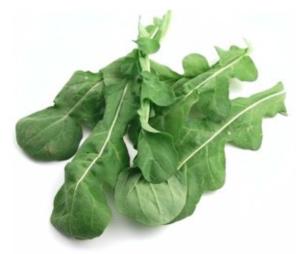 Vegan mat som tillsätter protein i salladen